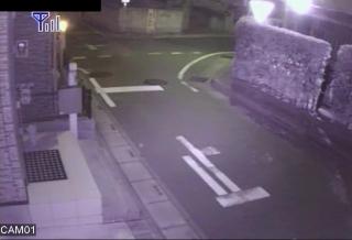 我が家の防犯カメラ夜間映像